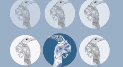 دانلود آلبوم کلاغ سفید از گروه دال