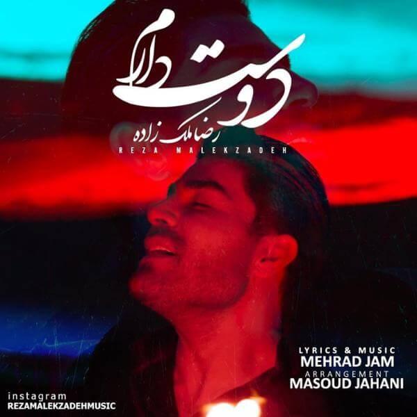 دانلود آهنگ دوست دارم رضا ملک زاده