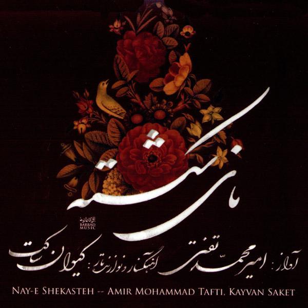 دانلود آلبوم نای شکسته از امیر محمد تفتی