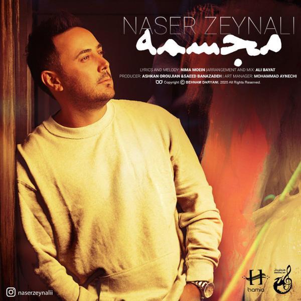دانلود آهنگ مجسمه ناصر زینلی